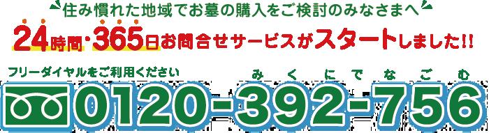 0120-392-756