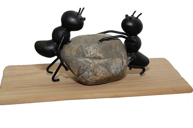 ❤働かないアリの重要性🙌