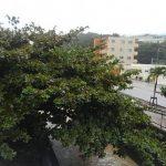 台風の影響ネット通信不能
