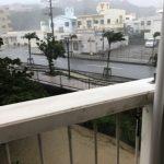 今日は沖縄本島は、台風です。