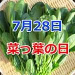 今日は、菜っ葉の日です。