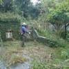 墓地地帯調査の為の草刈作業のひとコマ