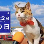 2月22日は「猫の日です。」