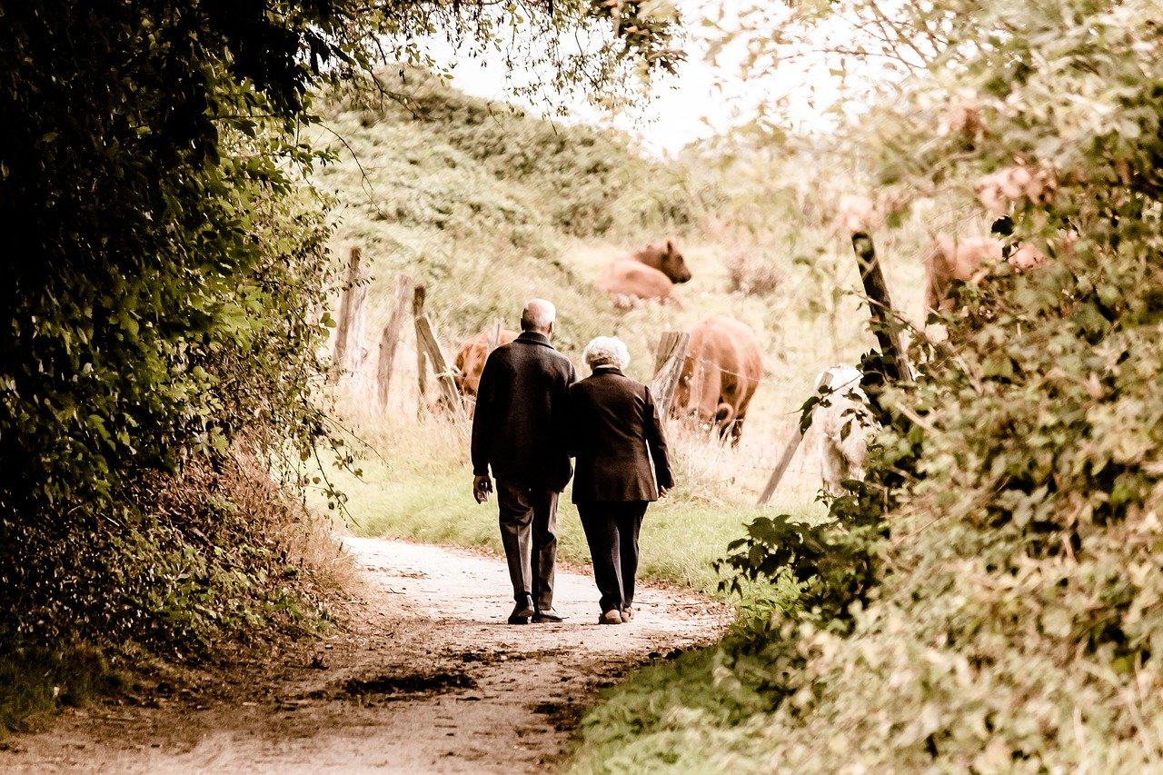 10月9日は「散歩の日」です。