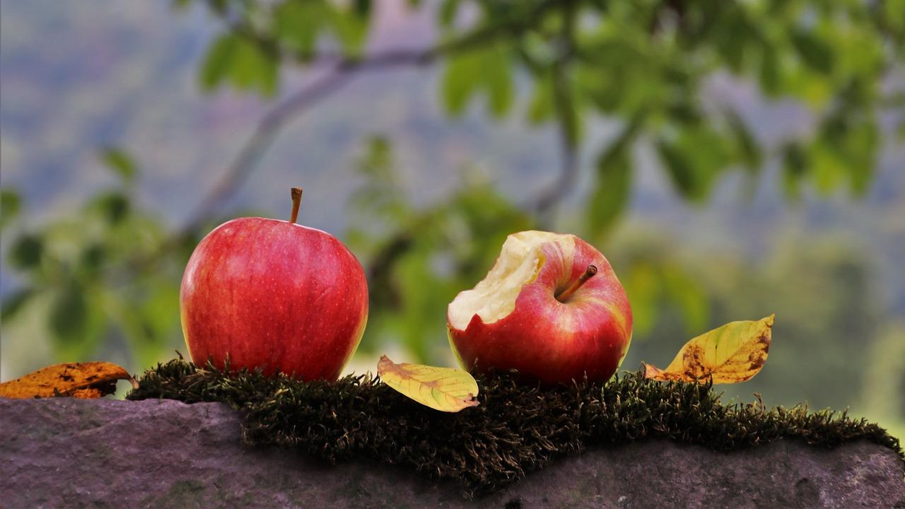 心のビタミン「異なる価値観を受け入れる秘訣とは?」